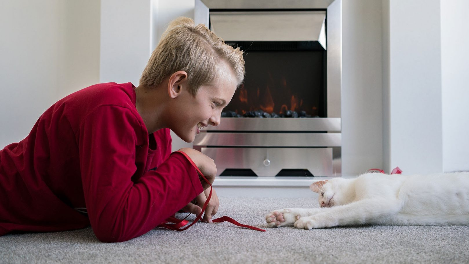 Fieldcraft Studios produce behind the scenes brand story for Cats Protection.
