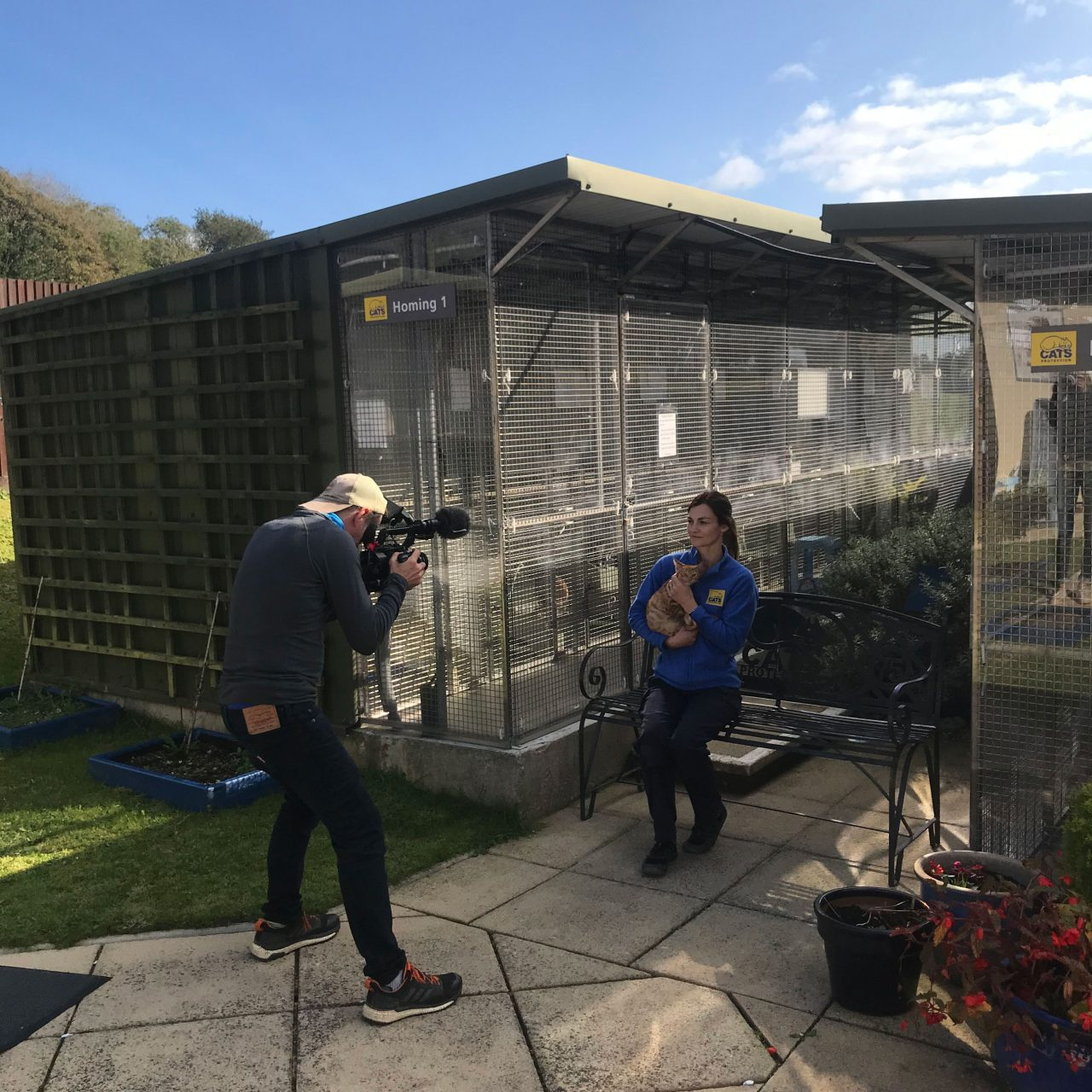 David Carter of Fieldcraft Studios filming a brand story for Cats Protection.
